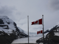36_Icefield_IMG_0316_w