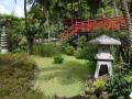 03_Monte_Jardim_Tropical_DSCN8971_w