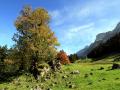 Alpstein_m_IMG_1233
